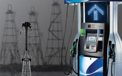 Palma Cané: «Hay un subsidio del consumidor a las petroleras, específicamente a YPF»